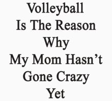 Volleyball Is The Reason Why My Mom Hasn't Gone Crazy Yet by supernova23