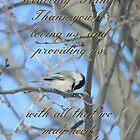 A Bird's Prayer by Heather Crough