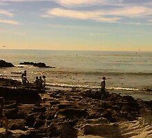 Laguna Beach by carls121