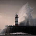 Lighthouse hit by waves by jamesdt