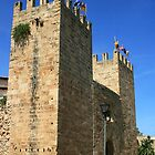 Gate of the City Walls, Alcdia by Wayne Gerard Trotman