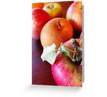 179/365 fruitful Greeting Card