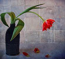 springtime blues by lucyliu