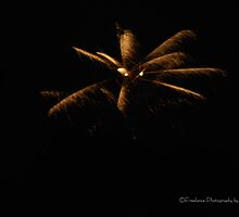 Fireworks 1 by Lindy Long