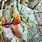 Rock layers by Paul Duncan