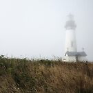 Misty Morning at Yaquina Head by EchoNorth