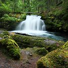 White Horse Falls by EchoNorth