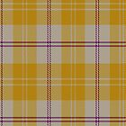 00705 Ailsa Gold Fashion Tartan Fabric Print Iphone Case by Detnecs2013