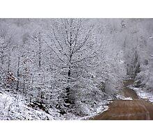 Scenic Snowy Drive Photographic Print