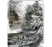 frozen needles iPad Case/Skin