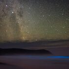 Bioluminescence at Squeaky Beach by Alex Cherney