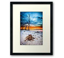 Stump at Kings Billabong Framed Print