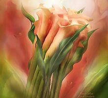 Peach Callas by Carol  Cavalaris