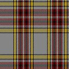 00720 Anthony Plaid Ecru Fashion Tartan Fabric Print Iphone Case by Detnecs2013