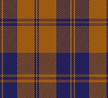 00732 Auburn University Tartan Fabric Print Iphone Case by Detnecs2013