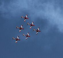 Roulettes by Di Jenkins