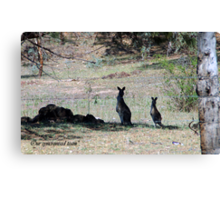Our syncronised team Canvas Print