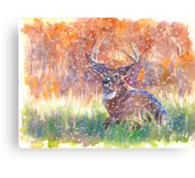 a stag in Winter Canvas Print
