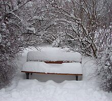 Lonely bench under the snow by Natas