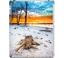 Stump at Kings Billabong iPad Case/Skin