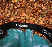 Canon love by copacic