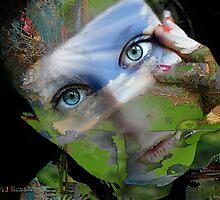 mine eyes have seen the glory by David Kessler