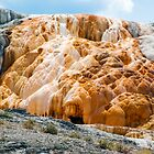 Mammoth Hot Springs Living Limestone - Yellowstone NP by Kenneth Keifer