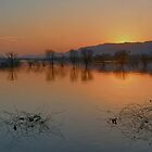 Sunset@Anasagar Lake by Mukesh Srivastava