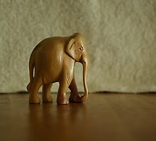 Wooden elephant walk 2 by jclegge