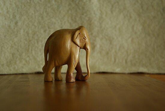 Wooden elephant walk 2 by jclegge