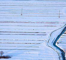 Winter across the Barje by Ian Middleton