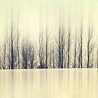 Reflections of Winter by KBritt