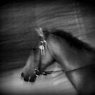 fast  by lilli robertson