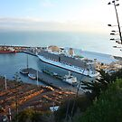 MV Arcadia docked in Napier, New Zealand by SeeOneSoul