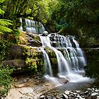 Liffey Falls by Chris  Randall