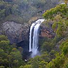 Ebor Falls by Cameron B