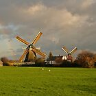 Holland by theBFG