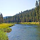Truckee River Calm by Clarkartusa