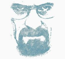Walter White - Meth Head by portiswood