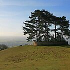 Wotton Hill by RedHillDigital