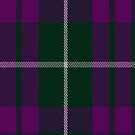 00774 Baru Fashion Tartan Fabric Print Iphone Case by Detnecs2013