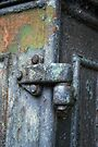 Hinge  by Nigel Bangert