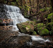 Falls on Betts Vale Track, Mount Wellington by Chris Cobern