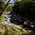 Mossman Gorge by LifeisDelicious