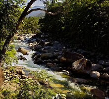 Mossman Gorge by LifeisDelicious