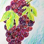 Red grapes by evonealawi