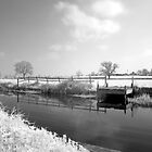 Bridgwater and Taunton Canal #4 by Antony R James