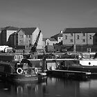Bridgwater Docks #3 by Antony R James