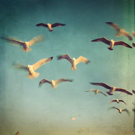 Dans avec les oiseaux by Taylan Soyturk