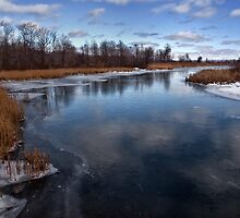 Winter On the Lagoons by Kathy Weaver